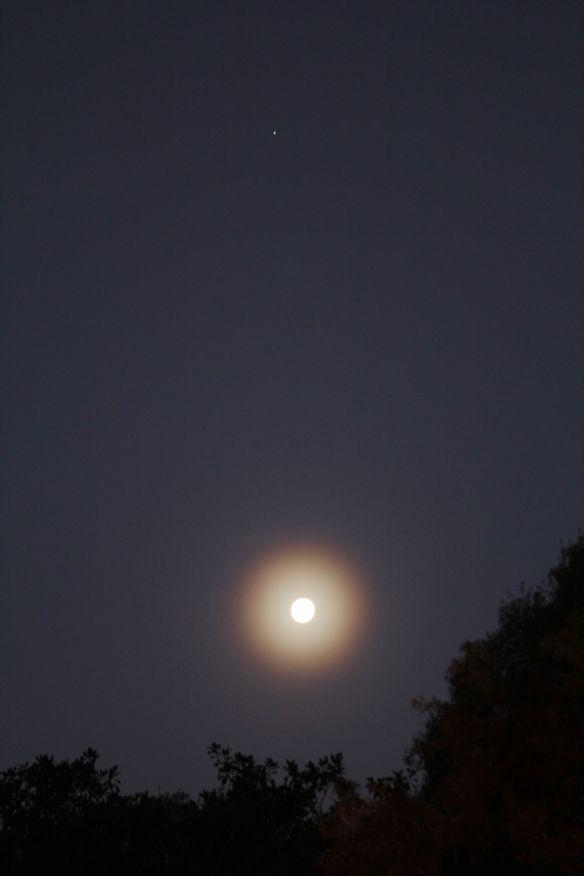 MoonHalo20131218-1