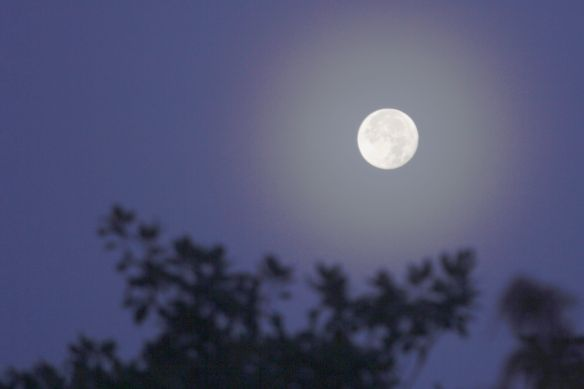 MoonHalo20131218-2
