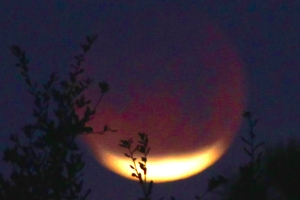 LunarEclipse20180131-3