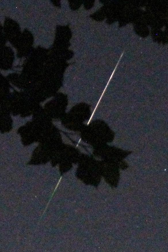 Meteor20190505