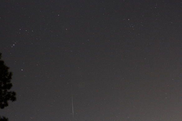 Geminids 20191213 - 4 of 7