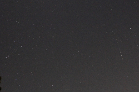 Geminids 20191213 - 5 of 7